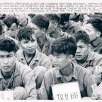 Pleiku 1966 - Operation Paul Revere Viet Cong Prisoners - Vietnam War UPI Wire Photo